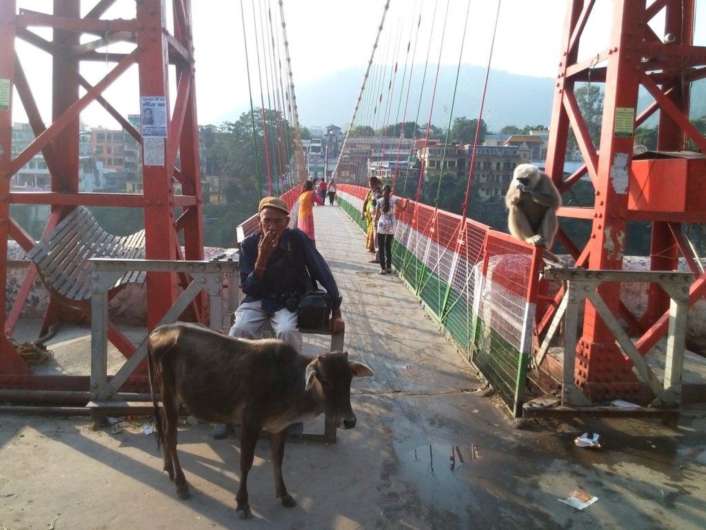 Мост Лакшманджула в Ришикеше