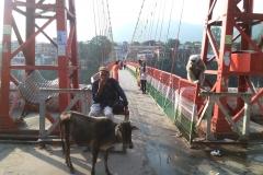 laxmanjhula_bridge